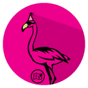 Fun Flamingo